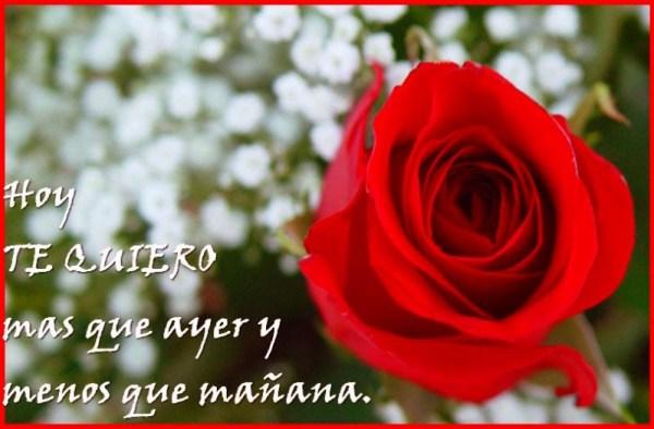 Te quiero mas que ayer Imagenes rosas