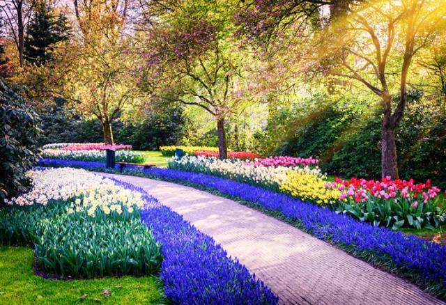 Fotos de Bellos jardines de flores de primavera