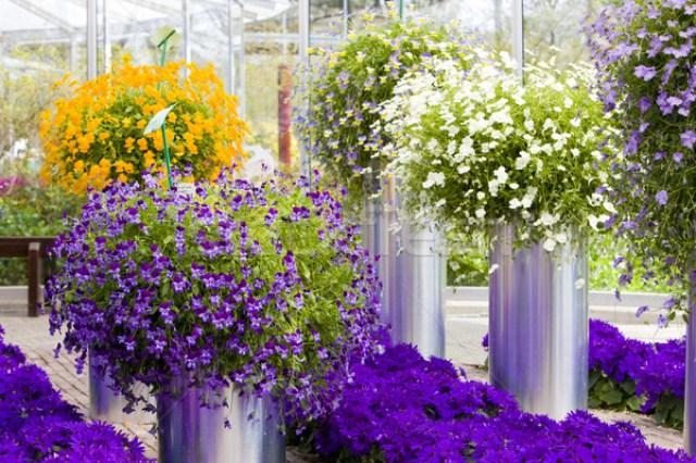 Jardines de flores en Europa