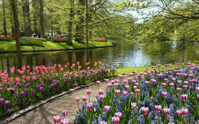 keukenhof-Jardin de Europa en netherlands Parque de tulipanes