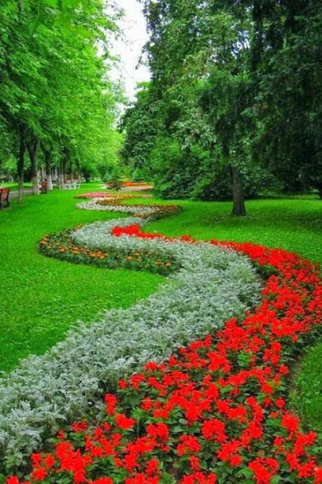 Bonitos jardines de flores para la pantalla del celular
