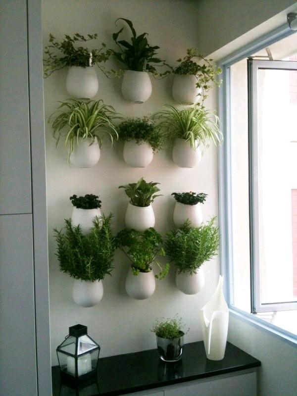 Imagenes con ideas de jardines verticales para apartamentos for Imagenes de jardines verticales