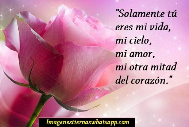 Imagen de rosa rosada con mensaje de amor para celular