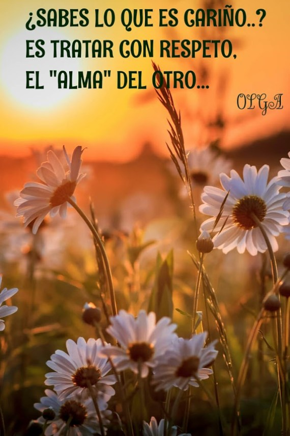 Imagenes Con Flores Y Lindas Reflexiones Para WhatsApp