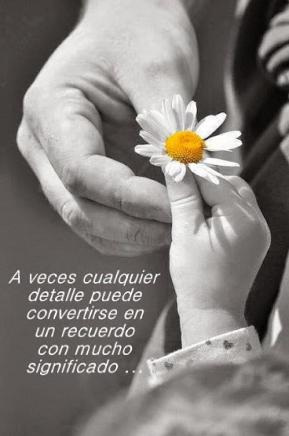 Imagenes De Flores Con Frases Para Reflexionar