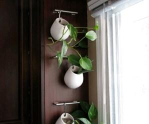 Imagenes Con Ideas De Jardines Verticales Para Apartamentos