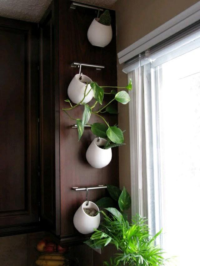Imagenes con ideas para jardines verticales en espacios interiores en apartamentos