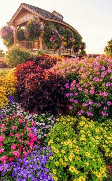 Imagenes de jardines de flores para fondo de celular