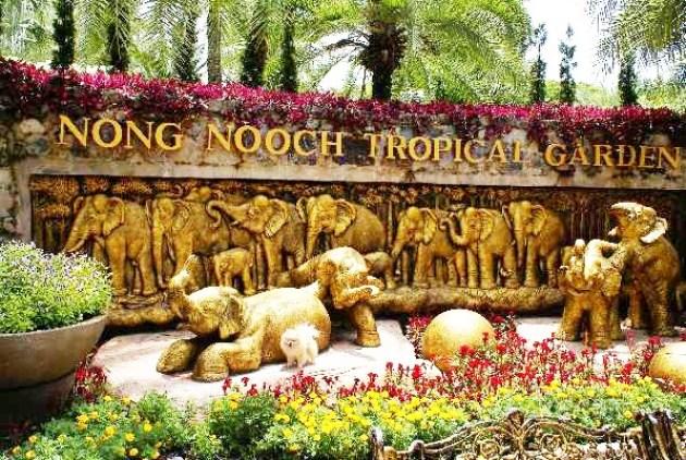 Jardín tropical en Tailandia Nong Nooch