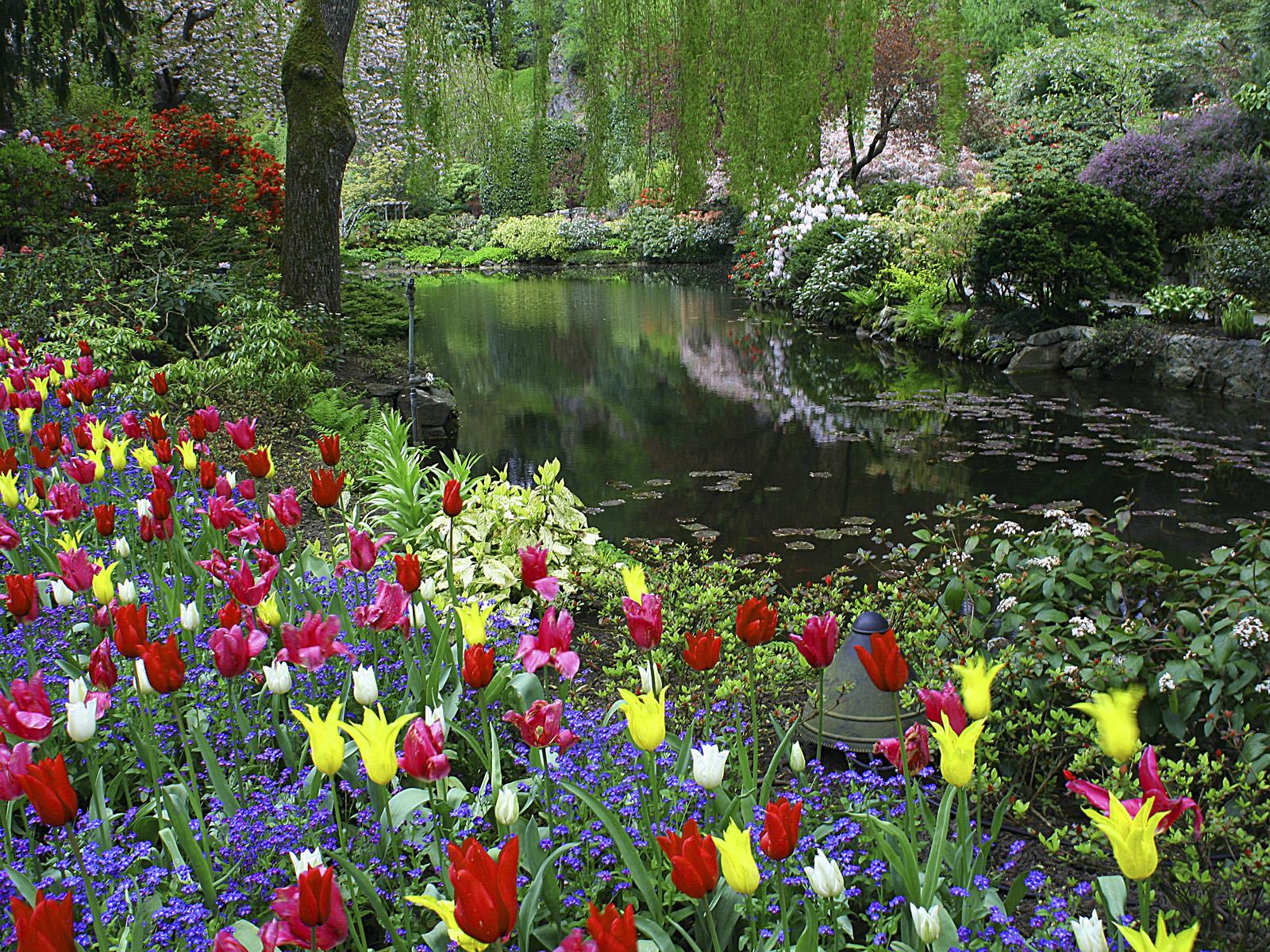 Bell simas imagenes del jardin butchart en canad for Guarda cosas para jardin