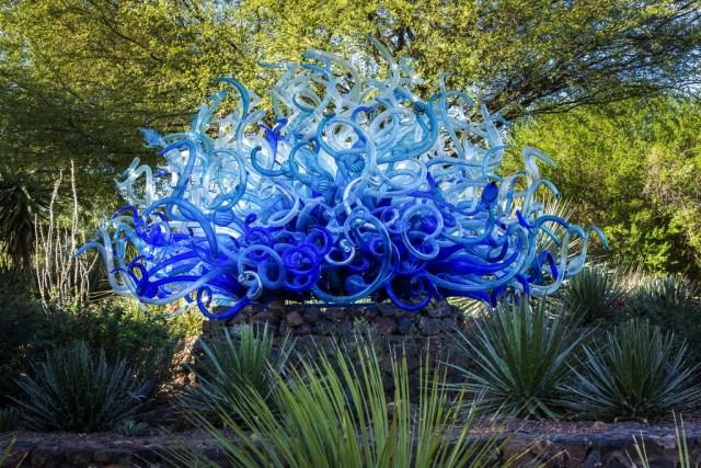 Foto escultura en el jardin botanico del desierto