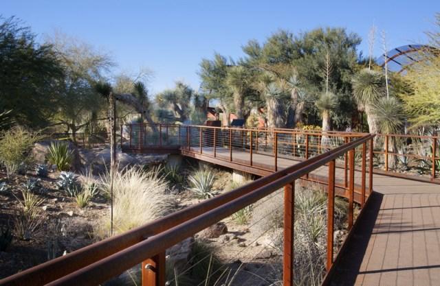 Imagen puente en el jardin botanico de Phoenix