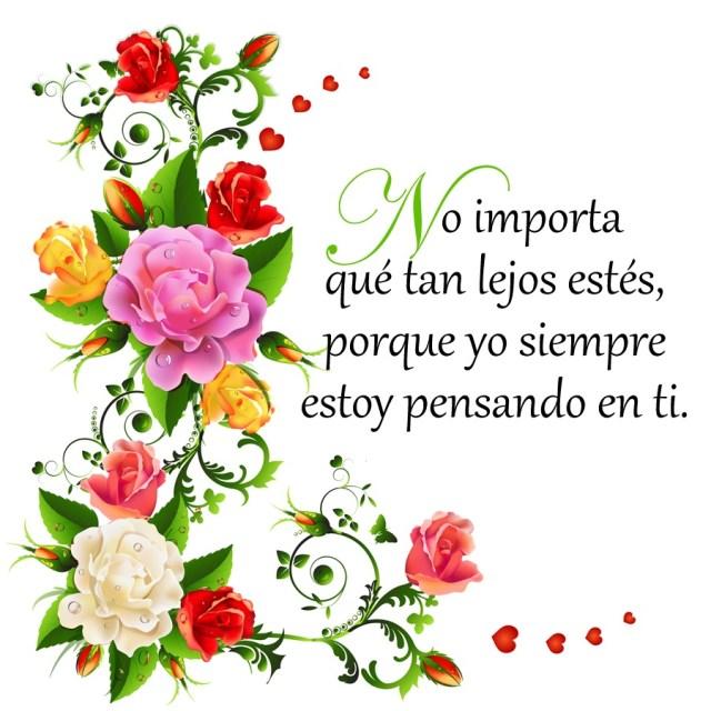 Imagenes De Flores Con Frases Para Un Amor Que Esta Lejos