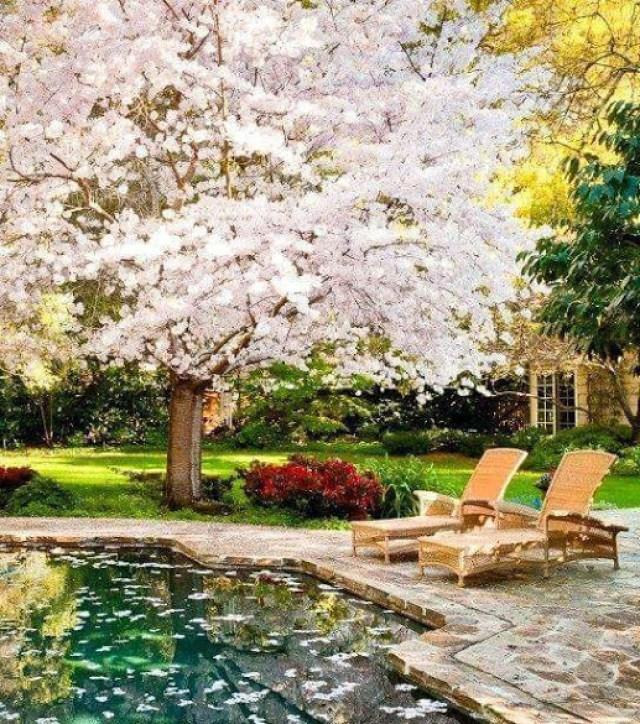 Imagenes de areas de descanso en el jardin