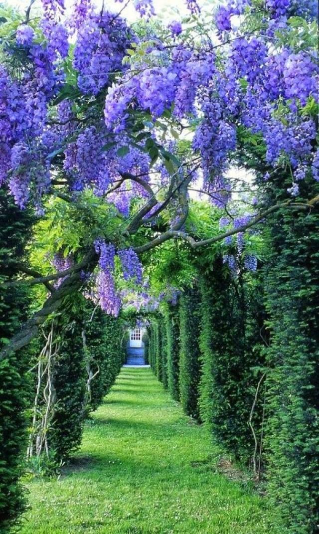 Imagenes de jardines para descargar y compartir