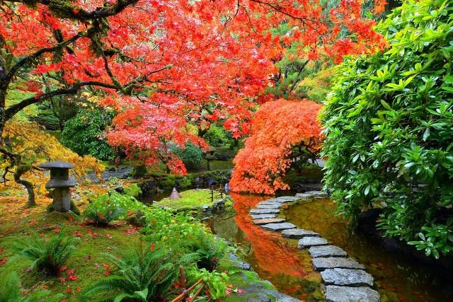 Imagenes de los jardines Butchart en Canadá para fondo de pantalla