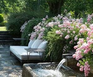Imagenes Con Ideas Para Diseños De Jardín