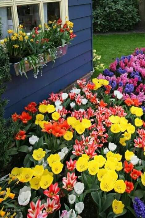 Jardines de flores en casas imagenes para whatsapp