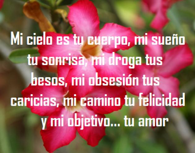 Los Mejores Versos De Amor Para Whatsapp En Imagenes De Flores