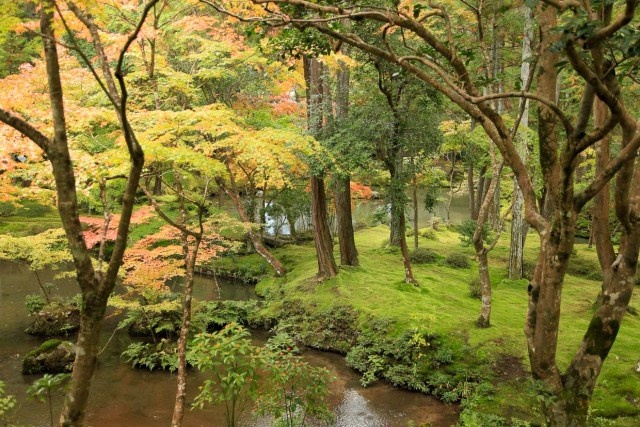 templo-del-musgo-saiho-ji-en-kyoto