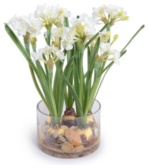 imagenes-de-narcisos-flores-para-navidad
