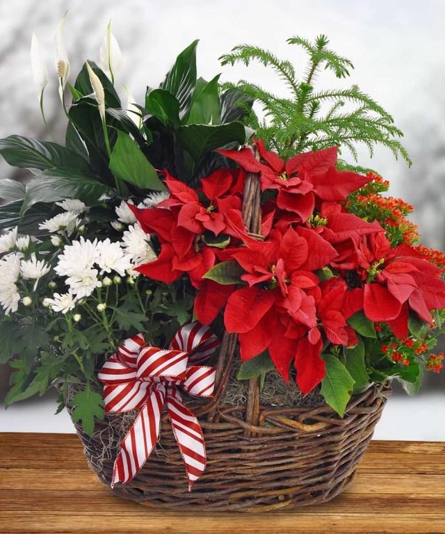 Arreglos de flores navideñas para decorar