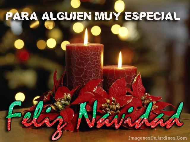 Imagenes Con Flores Navideñas Y Mensajes Para Dedicar