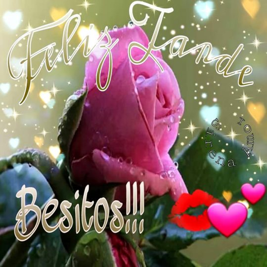 Feliz tarde rosas besitos