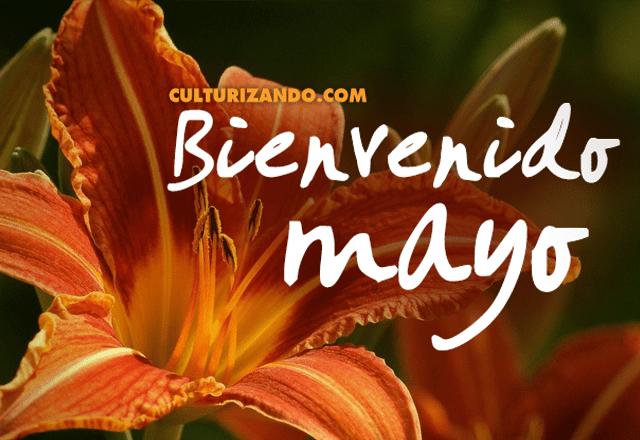Bienvenido Mayo para Facebook imagenes con flores
