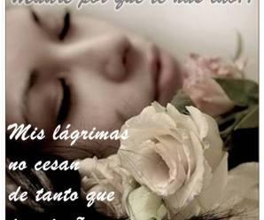 Rosas Blancas Con Mensajes De Amor Para Una Madre Fallecida