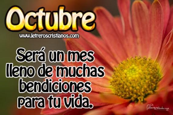 Imagen de una flor con frases para el mes de octubre facebook
