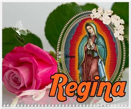 Imagen De La Virgen de Guadalupe Con rosas