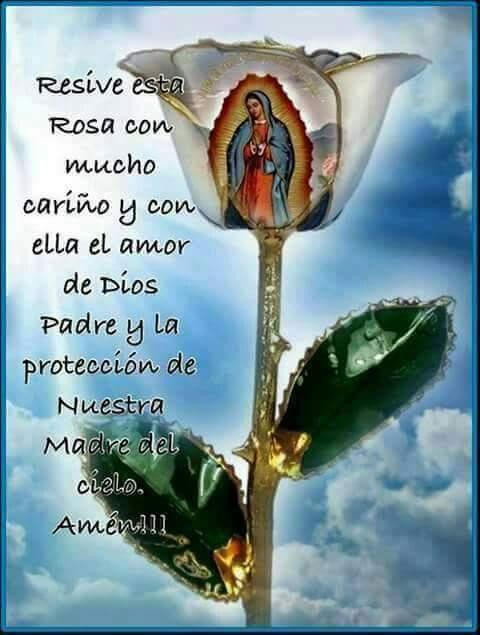 Imagen de la rosa De Guadalupe Con mensaje