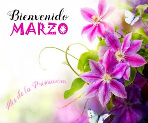 Imagenes Con Flores Bienvenido Marzo Para Estado
