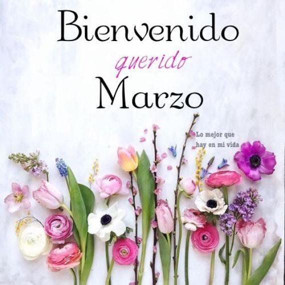 Imagenes De Flores Bienvenido Querido Marzo Para Perfil