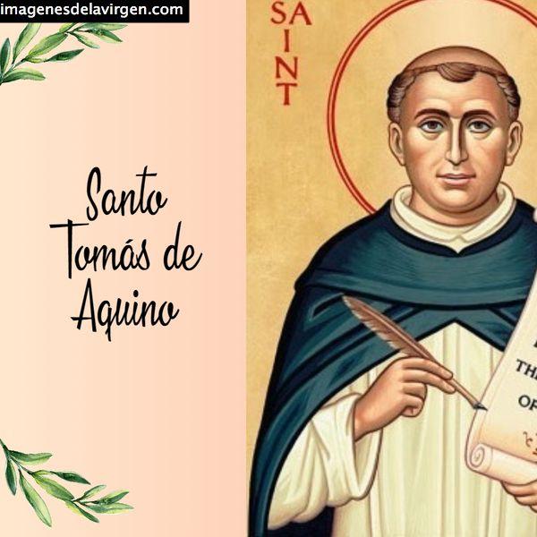 Imágenes De Santo Tomás De Aquino