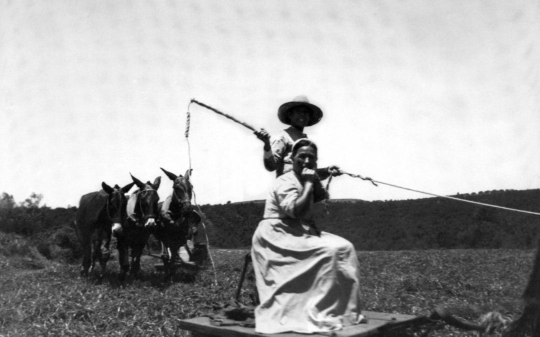 Trilla 1920