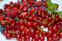 Plato con grosellas rojas y frutos rojos del bosque
