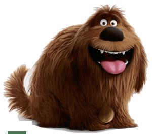 duke-el-secreto-de-tus-mascotas-2-imagenes-nombres-personajes