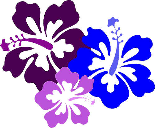 flores Lilo y Stitch