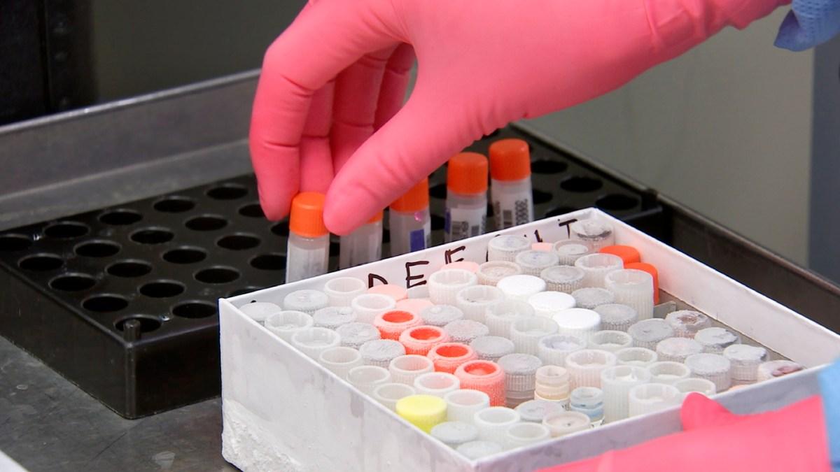 gloves-health-hospital-infection-lab-laboratory-1608798-pxhere.com