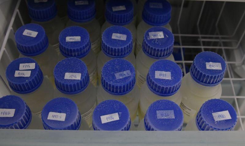Estoque de leite humano após passar pelo processo de pasteurização no Banco de Leite Humano da Unifesp/HSP.