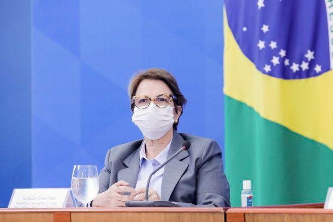 A ministra da Agricultura, Tereza Cristina, durante coletiva de imprensa.