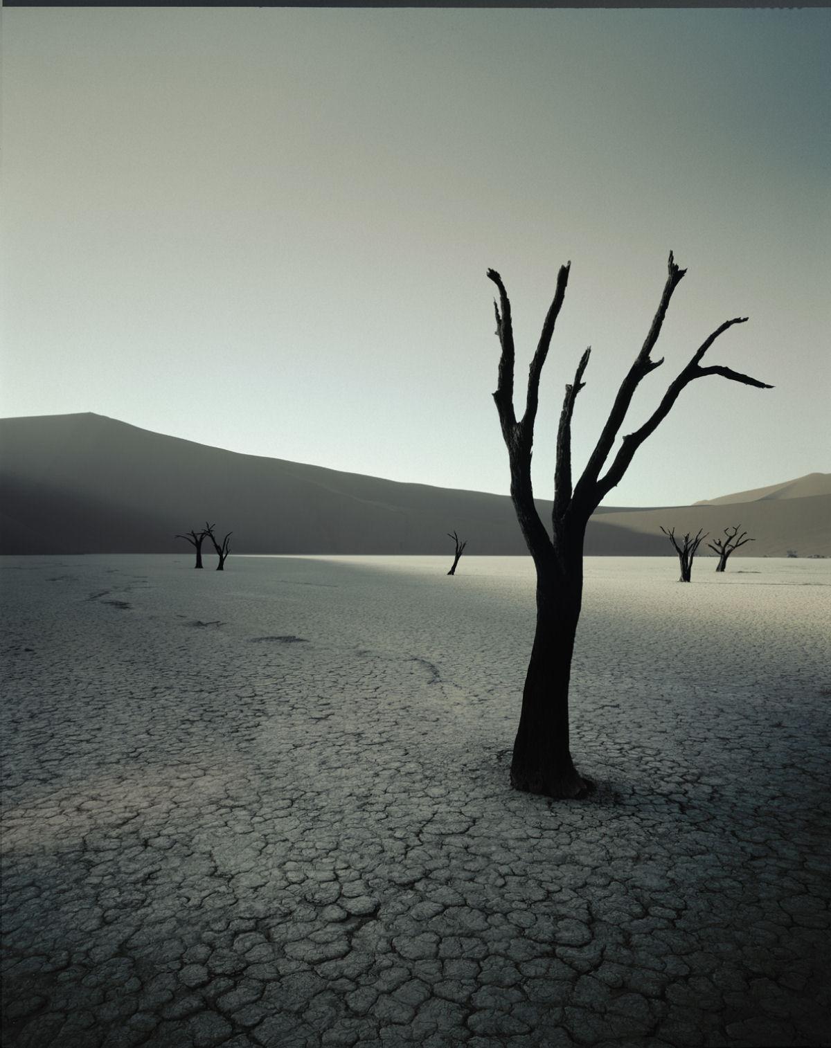 A beleza da tribo Himba, os últimos povos nômades da África 10