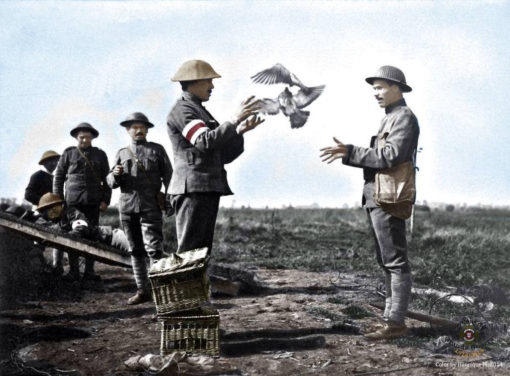 Fotos colorizadas trazem Primeira Guerra à vida 24