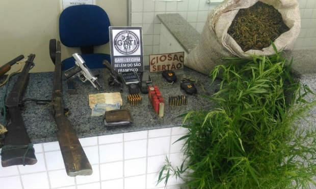 Polícia Militar erradica 7.500 pés de maconha / Foto: Divulgação/ Polícia Militar