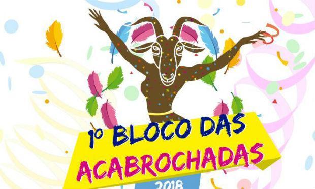 Bloco foi criação de um grupo de amigos.  / Foto: Divulgação