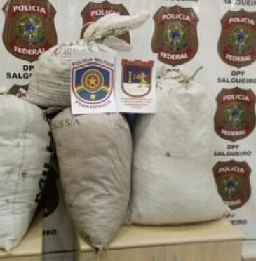 Trio teria saído do Recife para buscar drogas na região  / Foto: Polícia Militar
