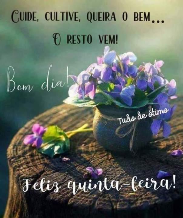 Frases de Bom Dia Quinta-Feira Para WhatsApp