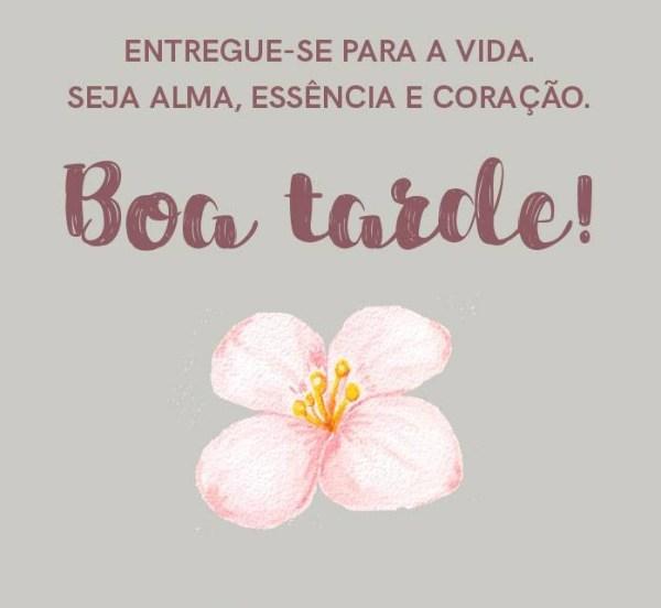 Imagens Bonitas Com Frases Para Motivar sua Tarde com rosas
